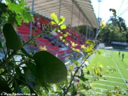 Hardtwaldstadion_SV_Sandhausen (2)